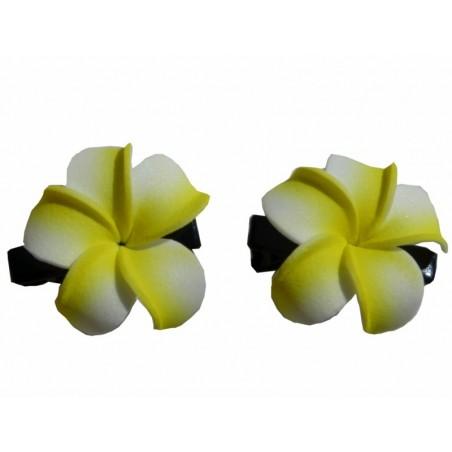 Mini barrette à cheveux frangipane