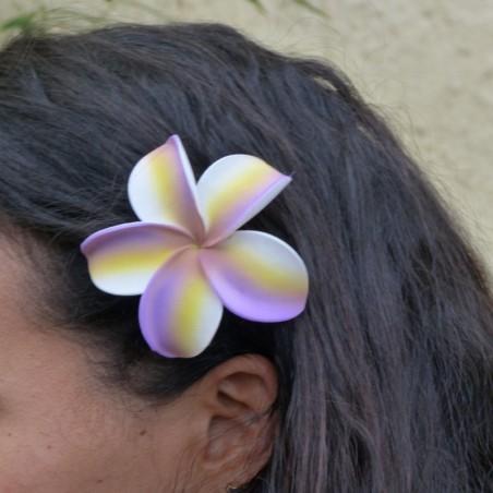 Barrette à cheveux frangipane