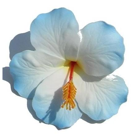 Barrette à cheveux Hibiscus blanc et bleu