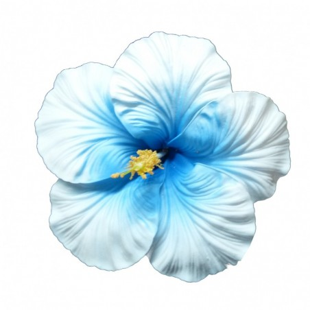 Très grosse barrette à cheveux Hibiscus blanc et bleu
