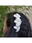 Peigne à cheveux frangipane